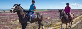 Horse riding in the North York Moors by Tony Bartholomew
