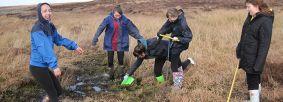 Moorland fieldwork