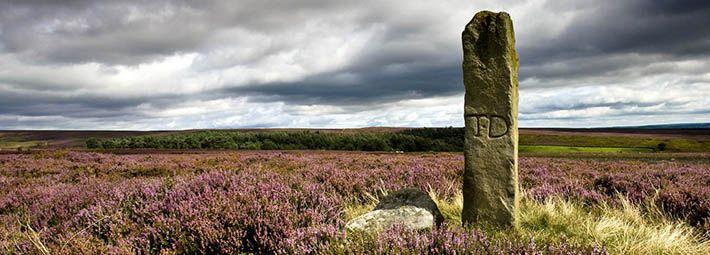 Standing Stone Spaunton Moor by Mike Kipling
