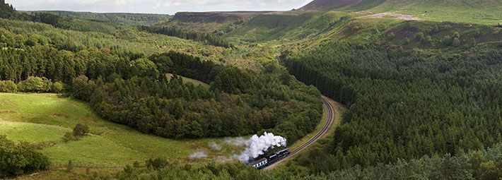 NYMR Train in Newtondale by Mike Kipling