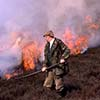 Gamekeeper heather burning