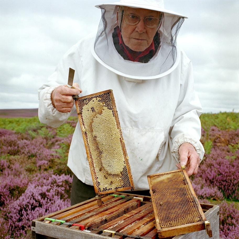 Beekeeper_Allan Jefferson Credit Tessa Bunney