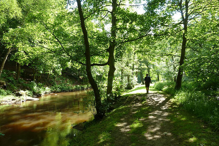 Esk Valley Walk, River Esk near Glaisdale Credit NYMNPA