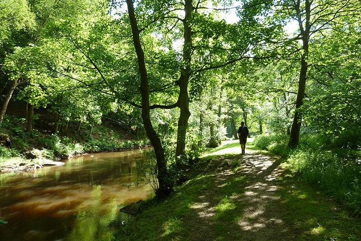 Esk Valley Walk, River Esk near Glaisdale Credit NYMNPA