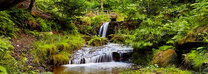 Blow Gill, Hawnby_credit Paul D Hunter