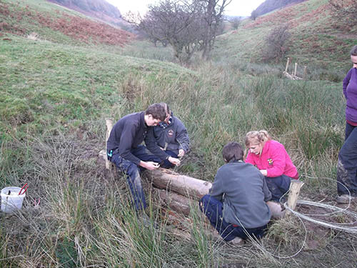 National Park Apprentices building timber dams in Hole of Horcum