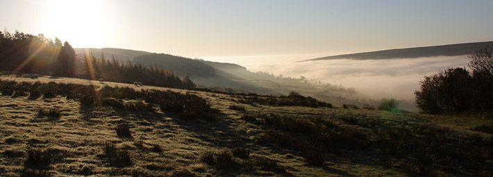 Misty morning in Rosedale by Jay Marrison