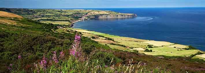 View from Ravenscar to Robin Hood's Bay by Mike Kipling