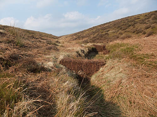 Moorland gully blocking with heather bales