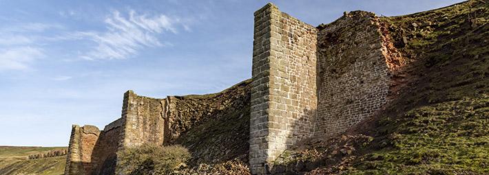 East Kilns conservation