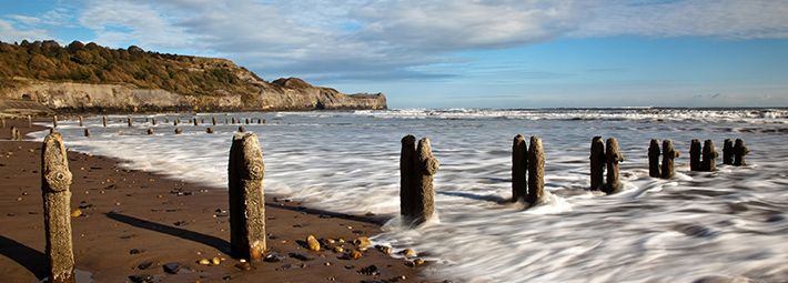 Groynes at Sandsend by Mike Kipling