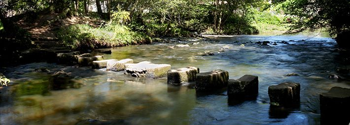 Stepping Stones at Egton Bridge by Chris Ceaser