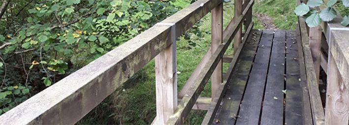 Footbridge across river