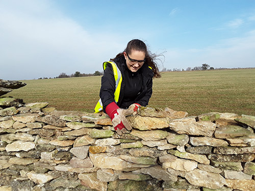 Young Ranger dry stone walling