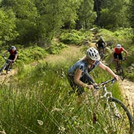Cycling on the North York Moors in Dalby Forest