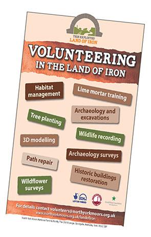 TEL Volunteer Poster