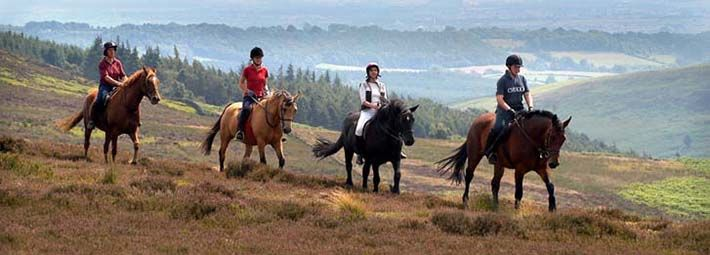 Horse riding near Rosedale, North York Moors by Tony Batholomew