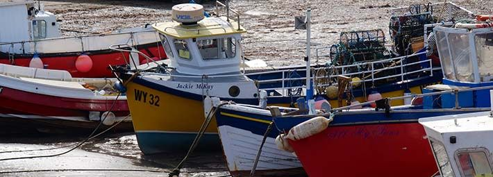 Staithes Harbour Credit Tony Bartholomew Turnstone Media