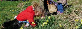 Easter Egg Hunt by Volunteer Brian Nicholson