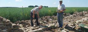 Dialstone Farm limestone walling repair men at work