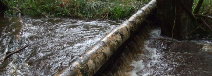 Natural flood management - Slowing the Flow