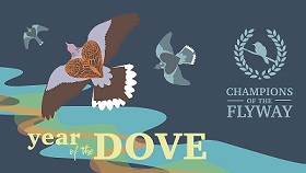 Year of the Dove logo