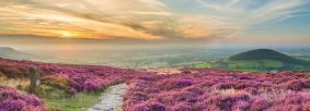 Cleveland Way National Trail, near Whorl Hill, credit Thomas Heaton VisitEngland