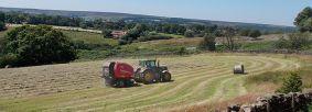 Farmland near Goathland (c) Tammy Andrews